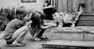 Fotos-ninos-jugando-gatos